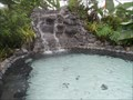 Image for Arenal Hot Springs  -  Fortuna, Costa Rica