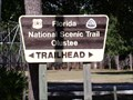 Image for Florida National Scenic Trail - Olustee, FL