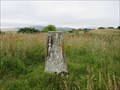Image for O.S. Triangulation Pillar - Craigie Hill, Fife.