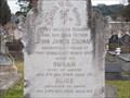 Image for John James Cronan - General Cemetery, Wollongong, NSW