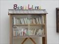Image for Boite a livre Saint Sigismond,France