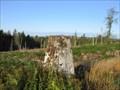 Image for O.S. Triangulation Pillar - Fothringham Hill, Angus.