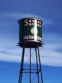 Savory Mushroom Farm Water Tower