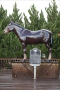 Image for The Mule - Muleshoe, Tx