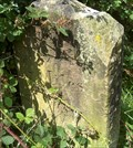 Image for Macclesfield Canal Milestone - Bollington, UK