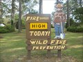 Image for Smokey Bear - Live Oak Forestry Station - Live Oak, FL