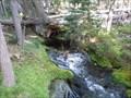 Image for Trapper Creek Springs - Oregon