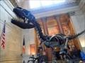 Image for Barosaurus and Allosaurus - Manhattan, New York