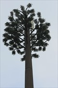 Image for Disguised Cell Tower - Boulouris-sur-Mer, France