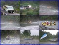 Image for Go White Water Rafting down a Wild River.