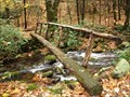 Image for Footbridge - Grassy Branch Trail - Gatlinburg, TN