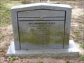 Image for Evergreen Cemetery - 150 Years - Gainesville, FL