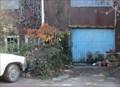 Image for Shade Tree - Oakland, CA