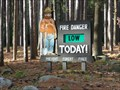 Image for Smokey Bear - Hopkinton MA