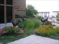 Image for Oklahoma Whitetail Deer - Oklahoma City, OK