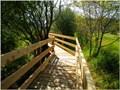 Image for Barbara Road Greenway - Comox Valley