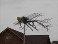 Image for Junk dragonfly, Wichita Kansas USA