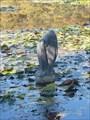 "Image for Ribe (""Fish"") - Tivoli Pond, Tivoli Park - Ljubljana"