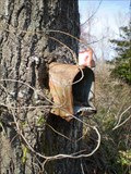 Image for Mailbox In A Tree - Millville, Delaware