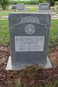 Image for Marshall Gray Jenkins - Tuscola Cemetery - Tuscola, TX