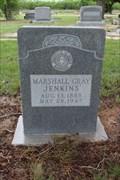 Image for Marshall Gray Jenkins - Tuscola Cemetery - Tuscola, TX