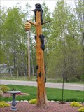 Image for The bears and the honey tree - Town of Wescott, WI