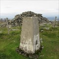 Image for O.S. Triangulation Pillar - Mount Blair, Angus.