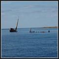 Image for Shipwreck - Dugi Otok, Croatia