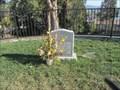 Image for Mass Grave of Jonestown Cult Members - Oakland, CA