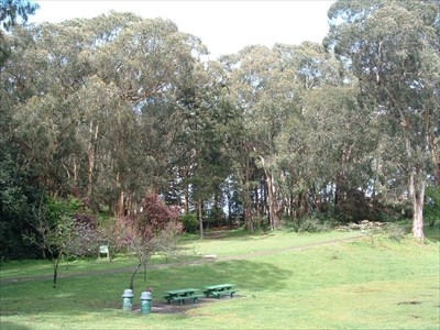 One of many open meadows for play and picnicking This one is near the GGP disc golf course