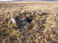 Image for Cist and Ring Cairn, Skir Hill, Dartmoor