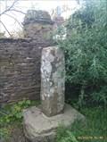 Image for Roman stone pillar, Trethevy, Cornwall