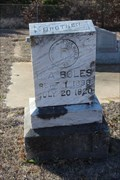 Image for B.A. Boles - Willow Pond Cemetery - Palo Pinto County, TX