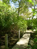 Image for Footbridge - Twin Lakes Preserve - Wantagh, NY