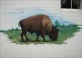Image for Buffalo Mural VFW Post 8040  -  Buffalo, OH
