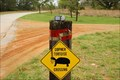 Image for Gopher Tortoise Crossing Sign, Lake Wales, FL