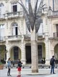 Image for Escultura Natura - La Habana, Cuba