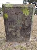 Image for Sarah A. Morris - Perryman Cemetery - Forestburg, TX