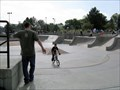 Image for Thornton Skate Park - Thornton, CO