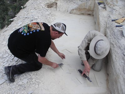 This is Ray digging right before finding his fossil.
