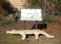 Image for Alligator Bench - Wakulla Springs, FL
