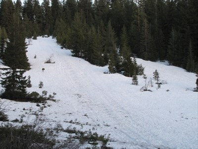Snowman's Hill Sledding Area, MacCloud, CA