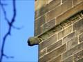 Image for Gargoyles, St. Mary's Church, Barnsley.