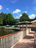 Image for Saratoga Springs - Lake Buena Vista, FL