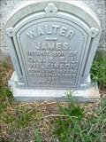 Image for Walter James Wilkinson - Trinity Episcopal Cemetery, Galveston, TX