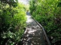 Image for Scout Island Boardwalk - Williams Lake, BC