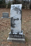 Image for Laura Tidmore - Tidmore Cemetery - Martin's Mill, TX