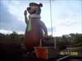 Image for Yogi Bear Mantua, Ohio
