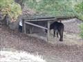 Image for Parc Animalier de Chatillon sur Thouet,France