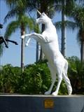 Image for Unicorn - Arabian Knights - Kissimmee - Florida.